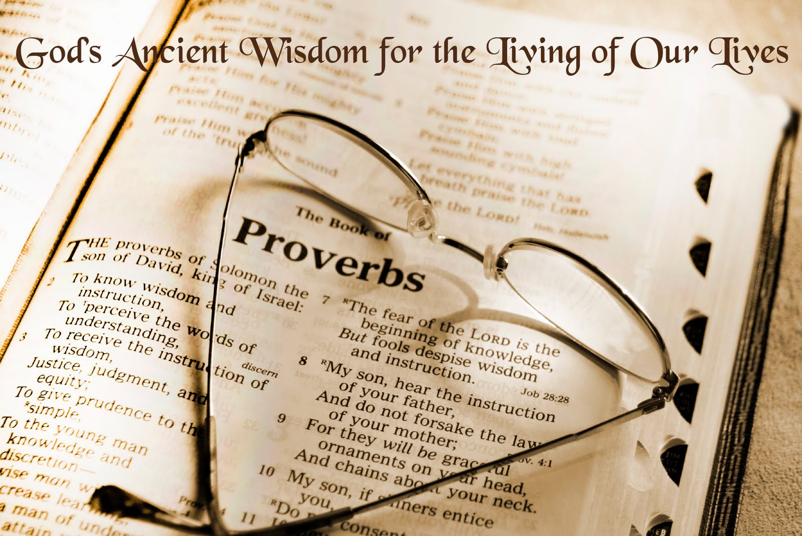 the book of proverbs The book of proverbs was written as poetry, and it employs many of the techniques common to hebraic poetry—vivid imagery, parallelism, and other literary techniques—to guide the reader in the quest for wisdom.