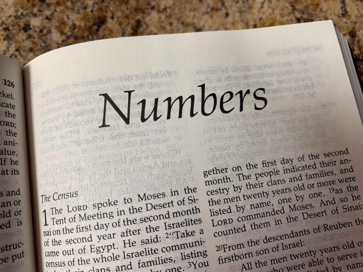 Jesus in the Book of Numbers Bible Study